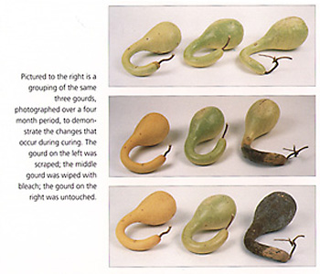 Book of Gourd Craft California.